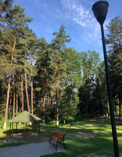 Obiective turistice din Petroșani BRADET 2