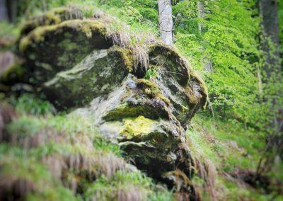 Momârla din GÂRBOVU de lângă TITAN