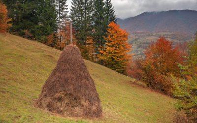 Zone folclorice din Hunedoara