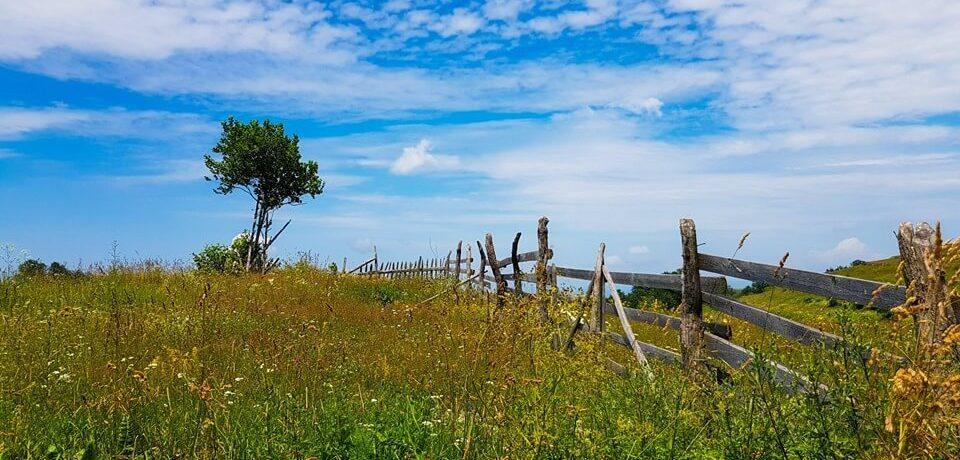 Zone folclorice din Hunedoara Cerbăl 1