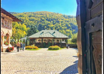 Mănăstirea LAINICI 13
